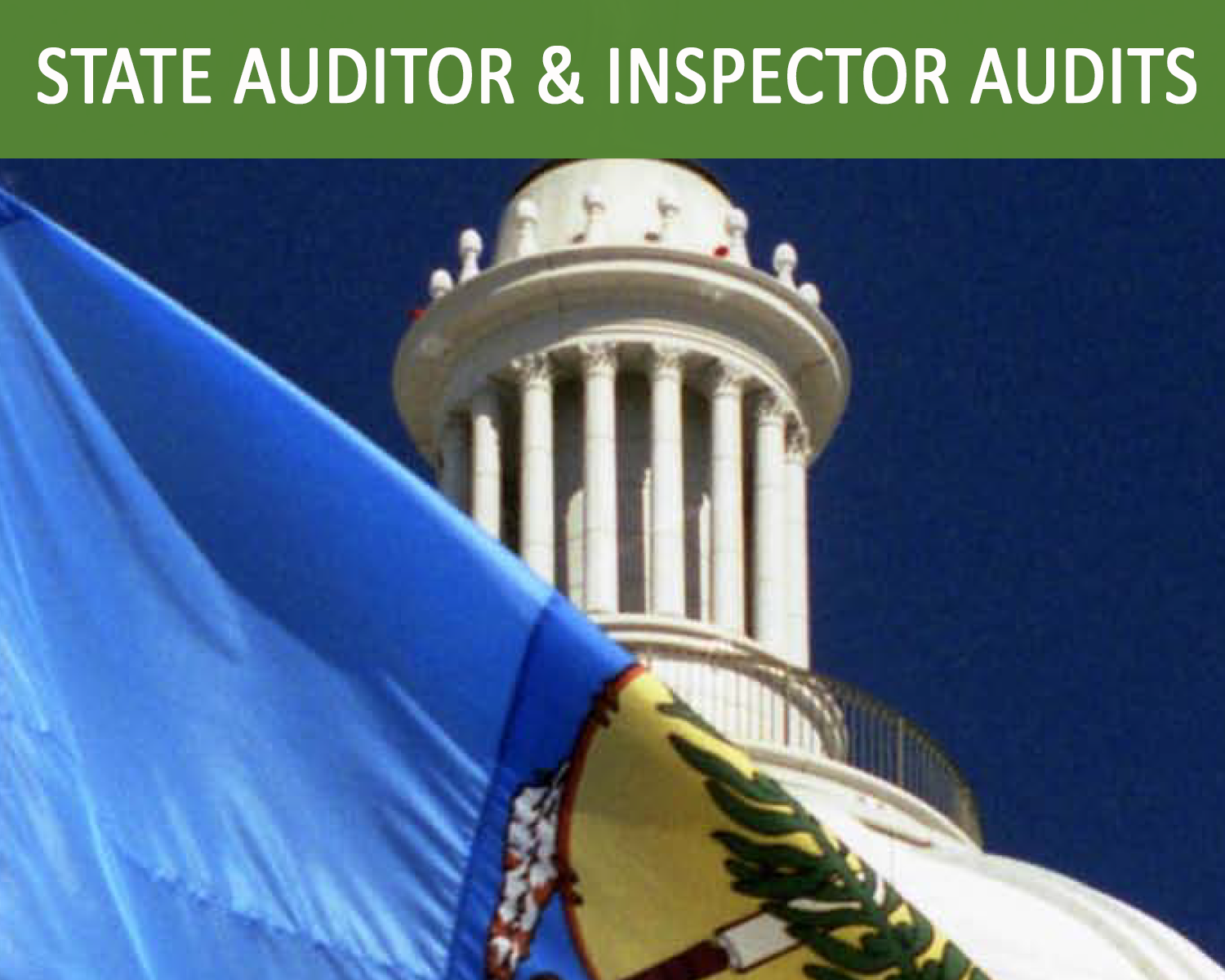 View State Audits online